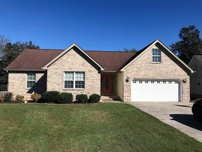 Ringgold Single Family Home For Sale: 312 Creeks Jewell Dr