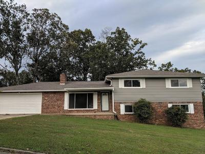 Hixson Single Family Home For Sale: 5801 Ragnar Dr