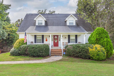 Ringgold Single Family Home For Sale: 96 Haven Dr