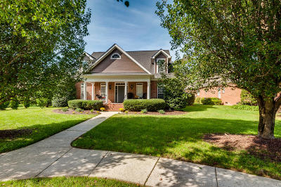 Chattanooga Single Family Home For Sale: 203 Horse Creek Dr