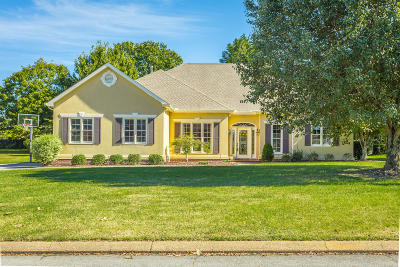 Chattanooga Single Family Home For Sale: 308 Shadow Walk Dr