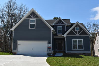 Ooltewah Single Family Home For Sale: 6611 Satjanon Dr #137