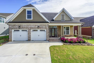 Ooltewah Single Family Home For Sale: 7546 Hollydale Ln