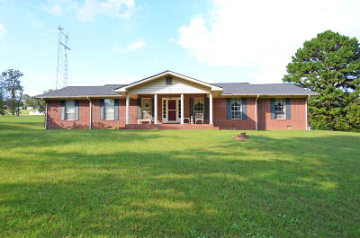 Spring City Single Family Home For Sale: 651 Watts Bar Hwy