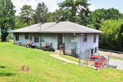 Chattanooga Single Family Home For Sale: 3008 Wilcox Blvd