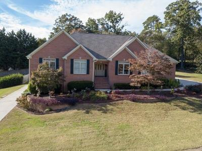 Chattanooga Single Family Home For Sale: 9335 Shadow Point Cir