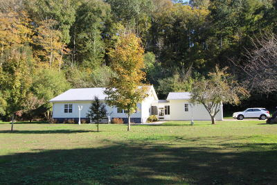Rising Fawn Single Family Home For Sale: 1409 Deer Head Cove Rd
