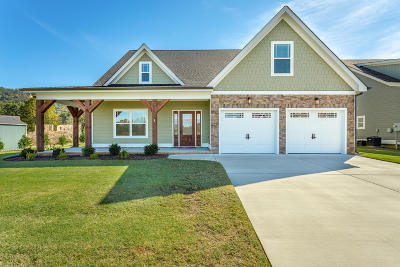 Ooltewah Single Family Home For Sale: 7570 Hollydale Ln