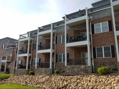 Chattanooga Condo For Sale: 207 Delmont St #Apt 107
