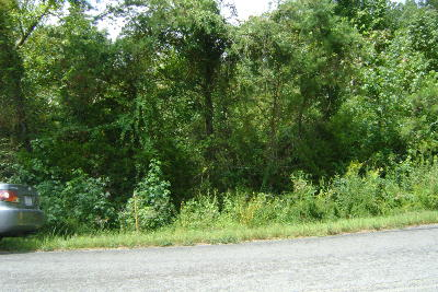 Trenton Residential Lots & Land For Sale: 00 McKaig Rd