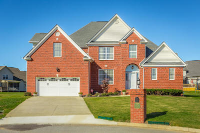 Ooltewah Single Family Home For Sale: 8225 Tipacanoe Ct