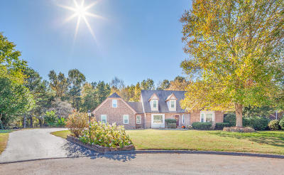Ooltewah Single Family Home For Sale: 8308 Whetstone Ln