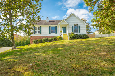 Hixson Single Family Home For Sale: 8721 Brookhill Dr