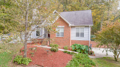 Soddy Daisy Single Family Home For Sale: 9110 Old Hixson Pike