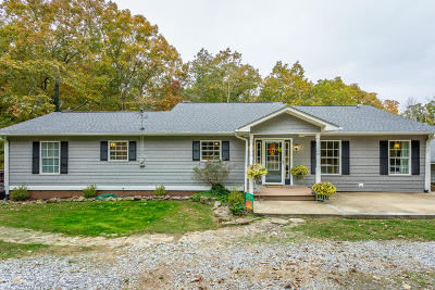 Rising Fawn Single Family Home For Sale: 1628 Plum Nelly Rd