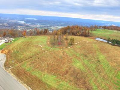 Marion Residential Lots & Land For Sale: 208 Cash Cave Rd #Lot 19