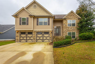 Ringgold Single Family Home For Sale: 24 Holly Oak Ln