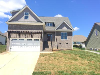Soddy Daisy Single Family Home For Sale: 9625 Shooting Star Cir