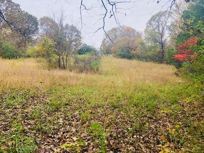 Marion Residential Lots & Land For Sale: 3430 Alvin C York Hwy