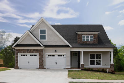 Chattanooga Single Family Home For Sale: 4692 Preserve Dr #35