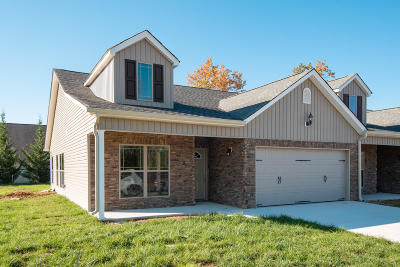 Chattanooga Townhouse For Sale: 6802 Satya Way #Unit 14