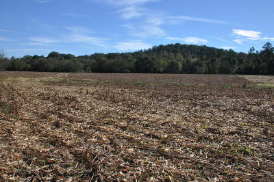 Marion Residential Lots & Land For Sale: 00 E Hwy 156 Rd