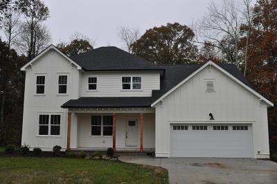 Signal Mountain Single Family Home For Sale: 802 Bell Ave