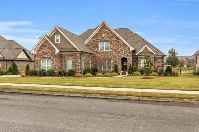 Ooltewah Single Family Home For Sale: 8085 Hampton Cove Dr
