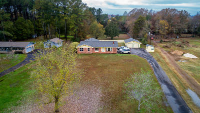 Ooltewah Single Family Home For Sale: 6611 Ooltewah Georgetown Rd