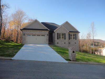 Soddy Daisy Single Family Home For Sale: 202 Vision Rd