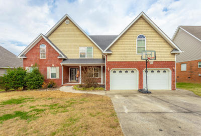 Ringgold Single Family Home For Sale: 239 Big Creek Ln