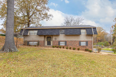 Ringgold Single Family Home For Sale: 365 Foster Dr
