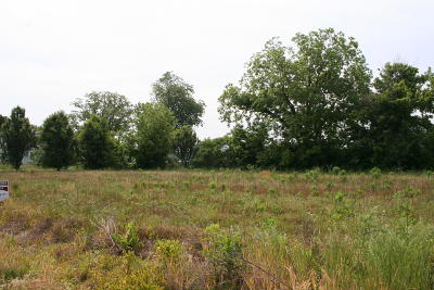 Ider Residential Lots & Land For Sale: County Road 159