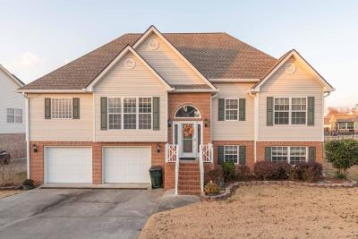 Ringgold Single Family Home For Sale: 439 Water Mill Trace