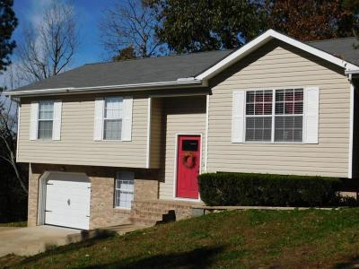 Ringgold Single Family Home Contingent: 99 Campbell Cir