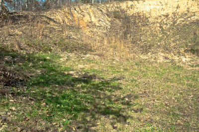 Chattanooga Residential Lots & Land For Sale: 807 Federal St
