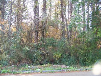 Chattanooga Residential Lots & Land For Sale: Camp Jordan Rd