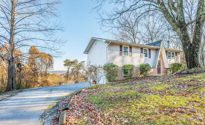 Hixson Single Family Home For Sale: 533 Ethyelyn Ln