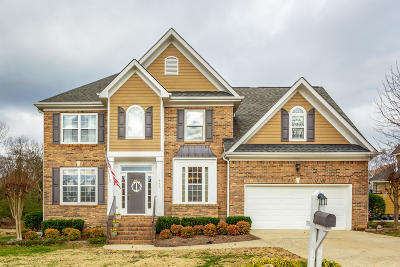 Ooltewah Single Family Home For Sale: 943 Cattails Dr