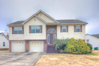 Ringgold Single Family Home Contingent: 45 Creeks Jewell Dr