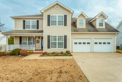 Ringgold Single Family Home For Sale: 248 Bluff View Dr