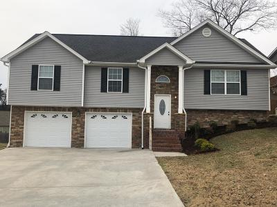 Ringgold Single Family Home For Sale: 187 Willowbrook Dr