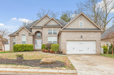 Ooltewah Single Family Home Contingent: 8490 Gracie Mac Ln