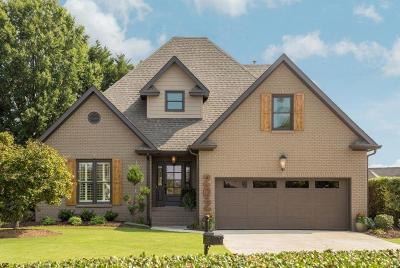 Ringgold Single Family Home Contingent: 202 Dancing Fern Tr