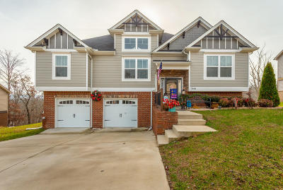 Ooltewah Single Family Home Contingent: 7448 Pfizer Dr