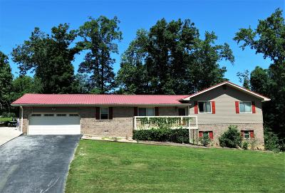 Chattanooga Single Family Home For Sale: 8907 Potomac Dr