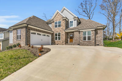 Apison Single Family Home For Sale: 4115 Lone Elm Ln