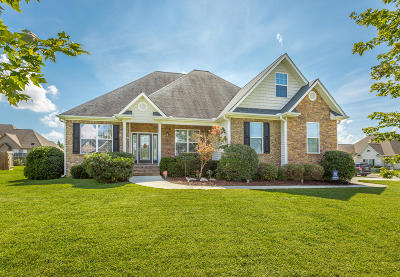 Ooltewah Single Family Home For Sale: 7310 Nightfall Cir