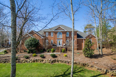 Ooltewah Single Family Home For Sale: 9701 Mountain Lake Dr