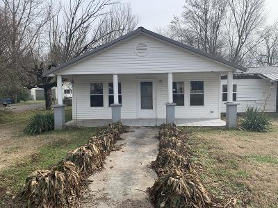 Spring City Single Family Home For Sale: 156 Short St